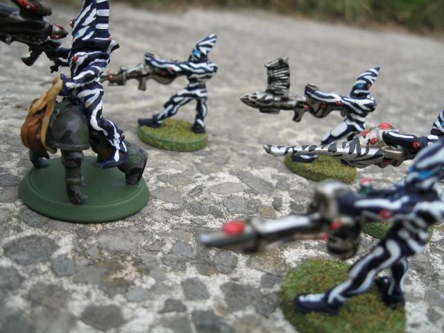 lesfaucheurs003 dans Unites Militaires